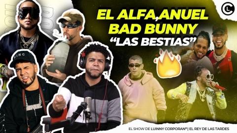 """EL ALFA """"EL JEFE"""" FT BAD BUNNY Y ANUEL AA GRABAN NUEVA CANCIÓN..."""