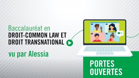 Baccalauréat en droit - common law et droit transnational