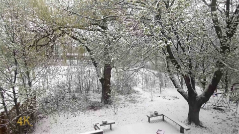 Toronto: Unusual late snowfall blankets city and parks 4-21-2021