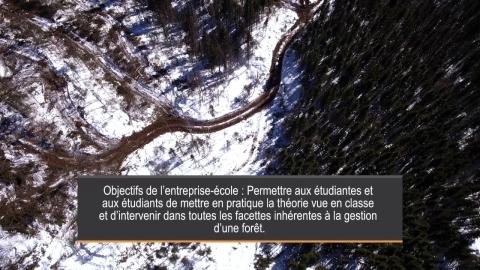 Entreprise-école en Technologie forestière