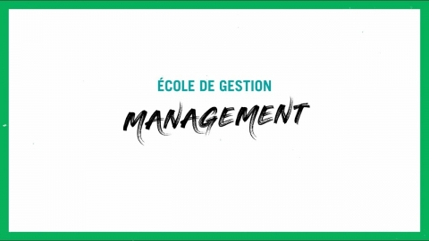 Baccalauréat en administration des affaires   Management