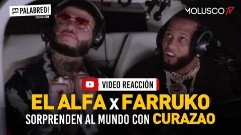 EL ALFA + FARRUKO sorprenden al mundo con CURAZAO 😳 #VideoReaccion #ElPalabreo 🇩🇴🇵🇷