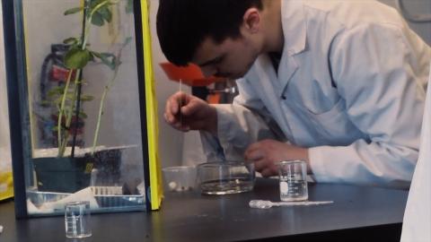 DEC | Techniques de bioécologie