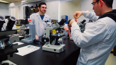 DEC | Technologie d'analyses biomédicales