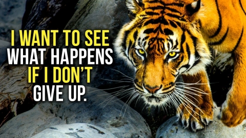 GET UP AND NEVER GIVE UP - New Motivational Video...