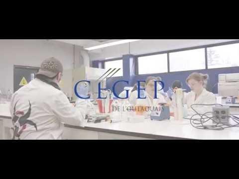 DEC | Techniques de laboratoire - Biotechnologies