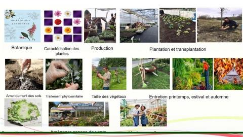 Programmes offerts à l'École des métiers de l'Horticulture de...