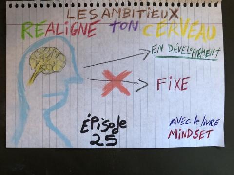 Réaligne ton cerveau (Mindset)