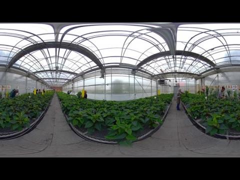Visite virtuelle du Centre de formation horticole de Laval