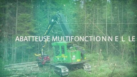 DEP | Abattage et façonnage des bois