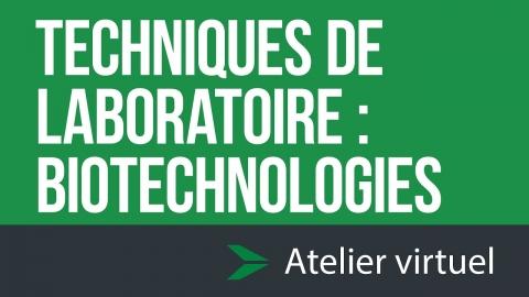 Techniques de laboratoire - Biotechnologies | Atelier d'exploration...