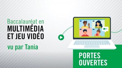 Baccalauréat en multimédia et jeu Vidéo