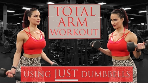 Full Arm Workout   At Home or Gym