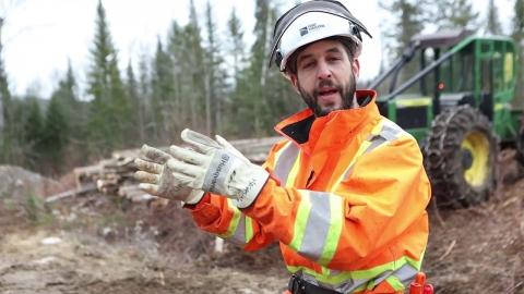 DEP | Abattage manuel et débardage forestier