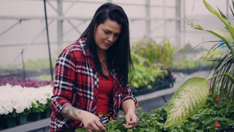 DEP | Horticulture