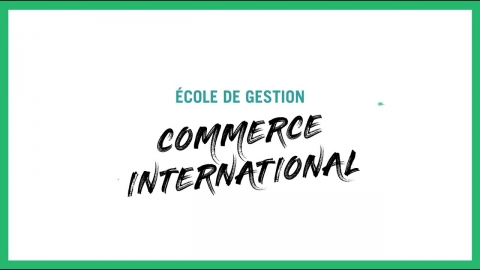 Baccalauréat en administration des affaires    Commerce international