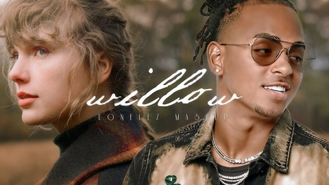 Taylor Swift - willow (Reggaeton Remix) ft. Ozuna, Wisin